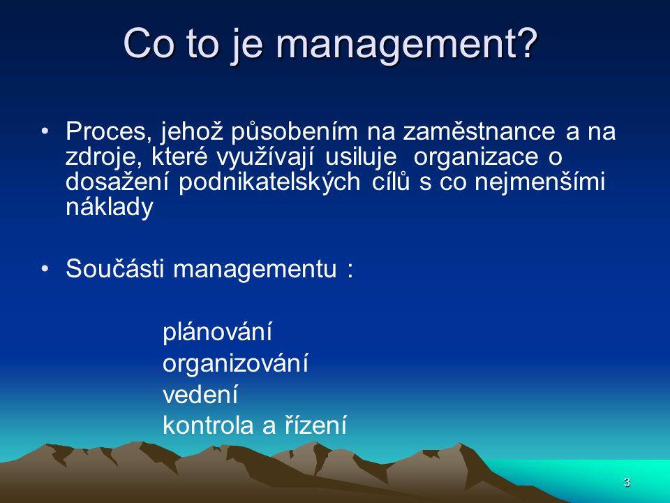 Manažerské rozhodování Základní úloha manažera.