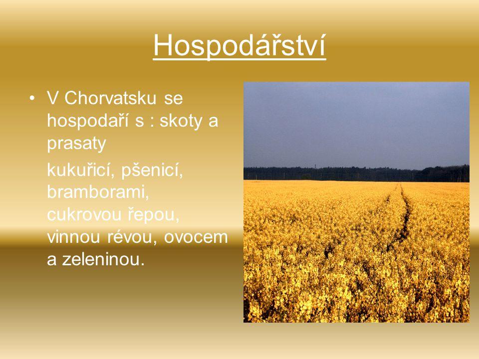 Hospodářství V Chorvatsku se hospodaří s : skoty a prasaty kukuřicí, pšenicí, bramborami, cukrovou řepou, vinnou révou, ovocem a zeleninou.