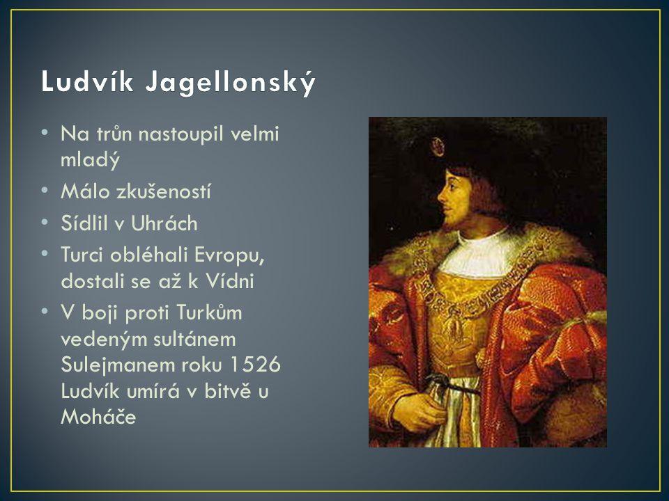 Na trůn nastoupil velmi mladý Málo zkušeností Sídlil v Uhrách Turci obléhali Evropu, dostali se až k Vídni V boji proti Turkům vedeným sultánem Sulejm
