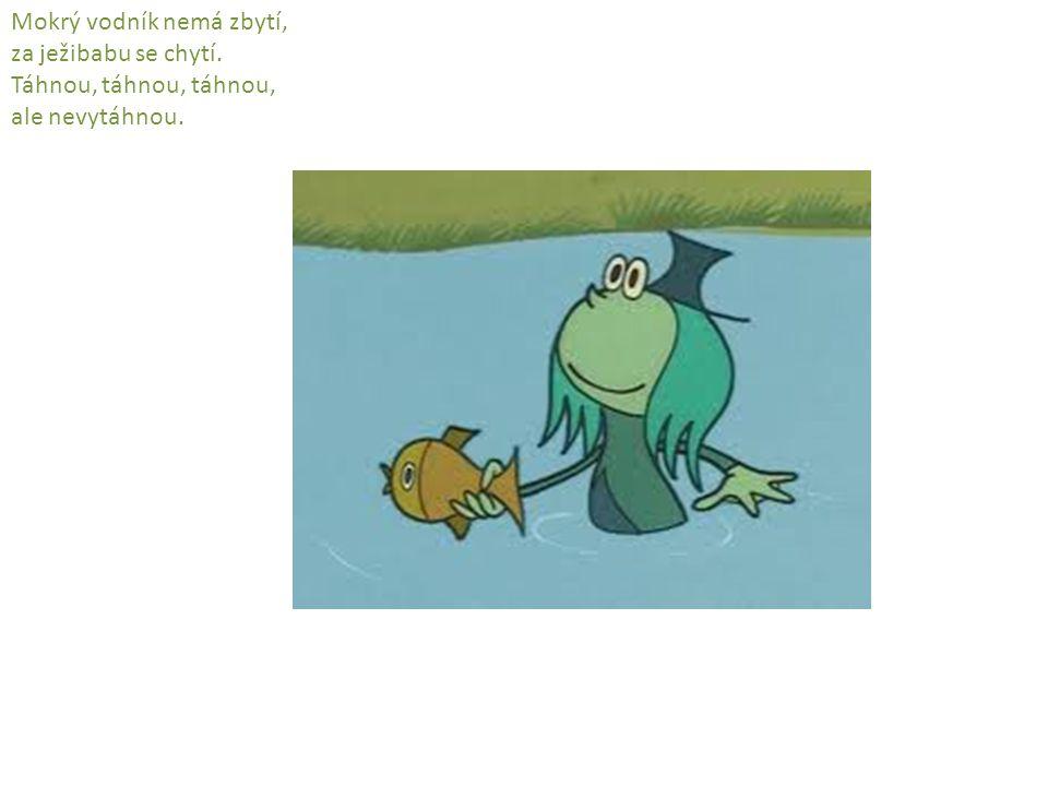 Mokrý vodník nemá zbytí, za ježibabu se chytí. Táhnou, táhnou, táhnou, ale nevytáhnou.