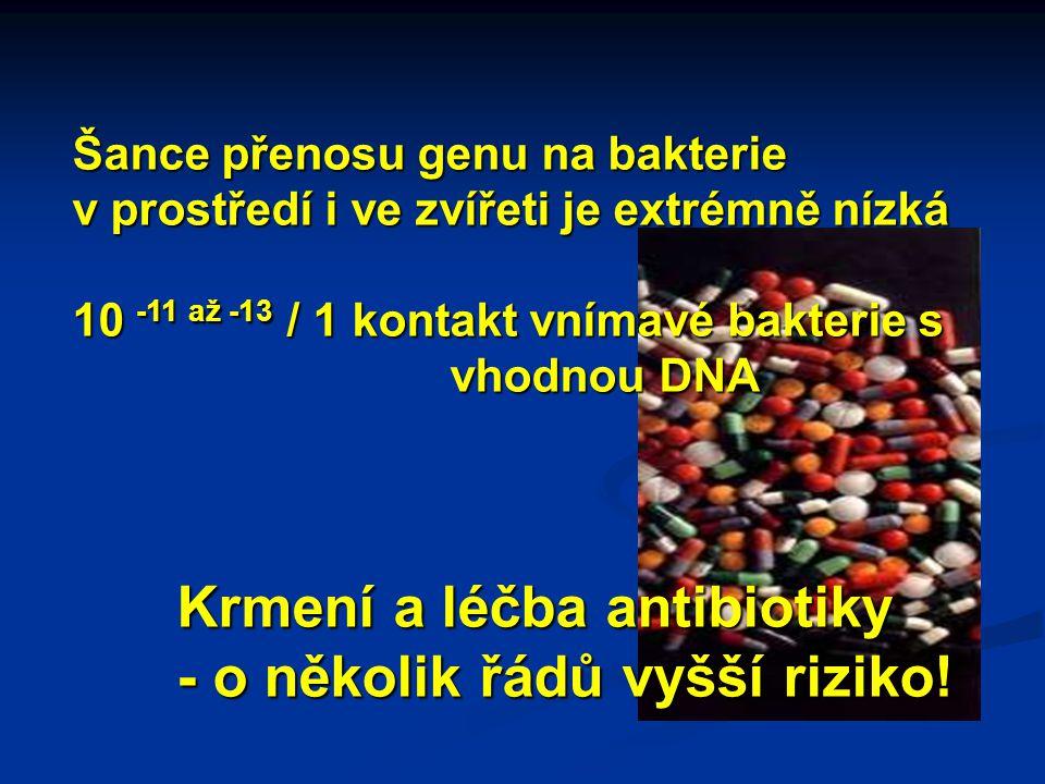 Šance přenosu genu na bakterie v prostředí i ve zvířeti je extrémně nízká 10 -11 až -13 / 1 kontakt vnímavé bakterie s vhodnou DNA Krmení a léčba antibiotiky - o několik řádů vyšší riziko!