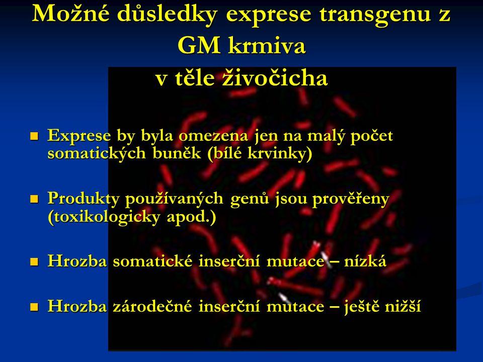 Možné důsledky exprese transgenu z GM krmiva v těle živočicha Exprese by byla omezena jen na malý počet somatických buněk (bílé krvinky) Exprese by byla omezena jen na malý počet somatických buněk (bílé krvinky) Produkty používaných genů jsou prověřeny (toxikologicky apod.) Produkty používaných genů jsou prověřeny (toxikologicky apod.) Hrozba somatické inserční mutace – nízká Hrozba somatické inserční mutace – nízká Hrozba zárodečné inserční mutace – ještě nižší Hrozba zárodečné inserční mutace – ještě nižší