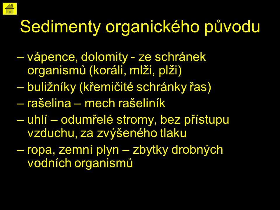 Sedimenty organického původu – vápence, dolomity - ze schránek organismů (koráli, mlži, plži) – buližníky (křemičité schránky řas) – rašelina – mech r