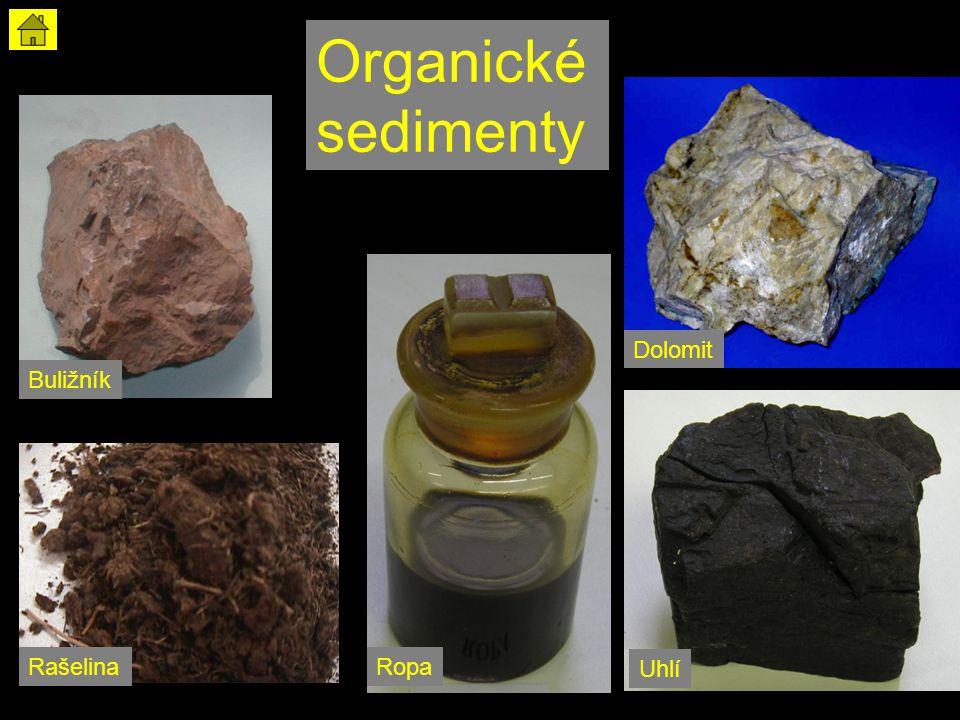 Organické sedimenty Buližník RašelinaRopa Uhlí Dolomit