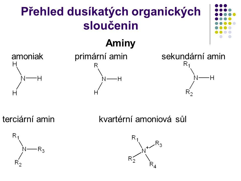 Přehled dusíkatých organických sloučenin Aminy amoniakprimární amin sekundární amin terciární aminkvartérní amoniová sůl