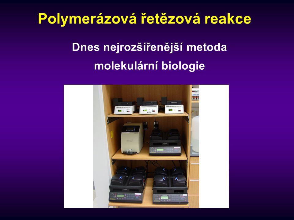 Výtěžek PCR - příklad Kolik cyklů PCR musíte použít, aby bylo možno detekovat amplikony o velikosti 500 bp vzniklé z jedné kopie dsDNA .