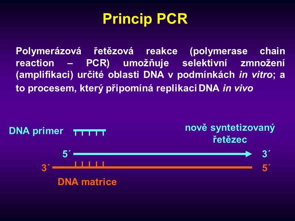 Návrh primerů - příklad Napište sekvenci primerů, které by mohly amplifikovat vyznačenou část daného úseku dsDNA -znáte sekvenci jen jednoho z řetězců -primery pište ve směru 5´- 3´ 5´- TGA TGC AAA GTT CGC TCA GGT ACG ATT CCC AAA TGT GGA GCT TAG TCG ATG ATG GGC AAA TCT GTG ATT ATC CGA CGT CCC ATG TGC GTC AAA TGC CGT AGG ACC CTA TTT TGA CGT CCT GCT GGT ACG CAT CAT CCC TGG TGA CGT CCT ACG TGC TGC GCT CGC ACG ATG CGT ACG AAC GCT CGT CGG – 3´ Jak dlouhý bude vzniklý amplikon ?