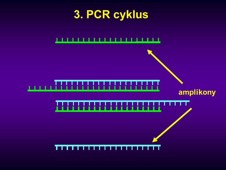 Chemické procesy ovlivňující PCR 1) Množství Taq polymerázy 2) Reakční pufr 3) Množství dNTP 4) Primery 5) Objem PCR reakce 6) Kvalita DNA