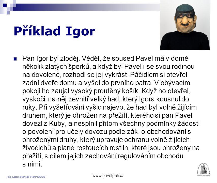 Příklad Igor www.pavelpetr.cz Pan Igor byl zloděj.