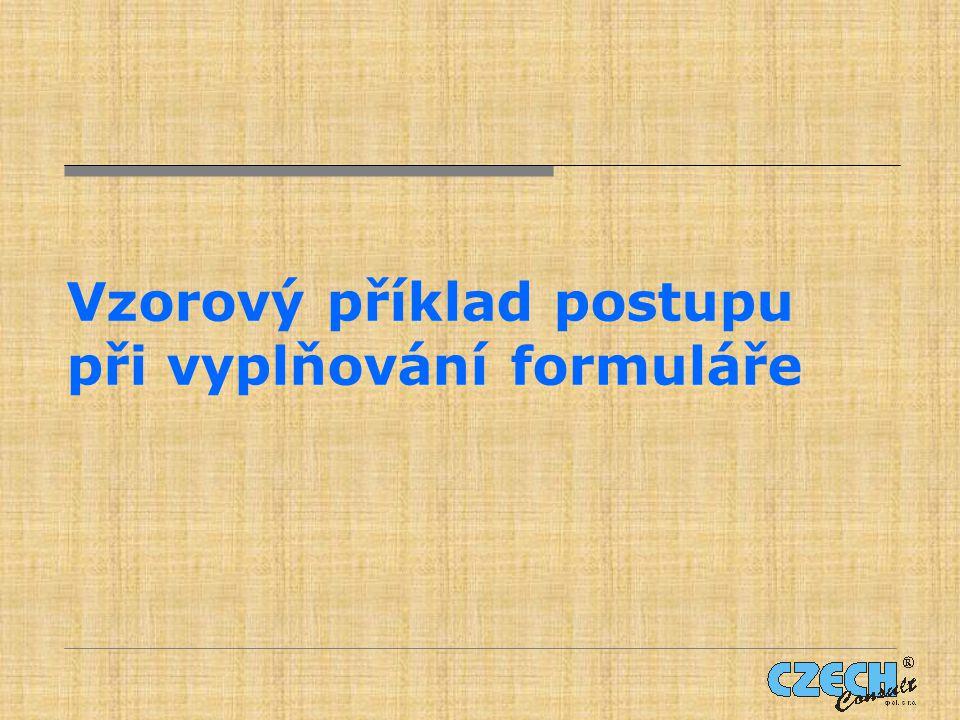 Vzorový příklad postupu při vyplňování formuláře