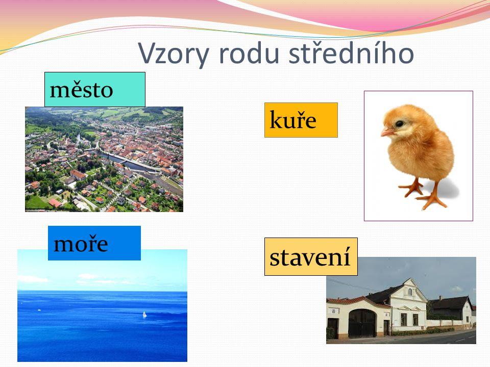Vzory rodu středního město moře kuře stavení