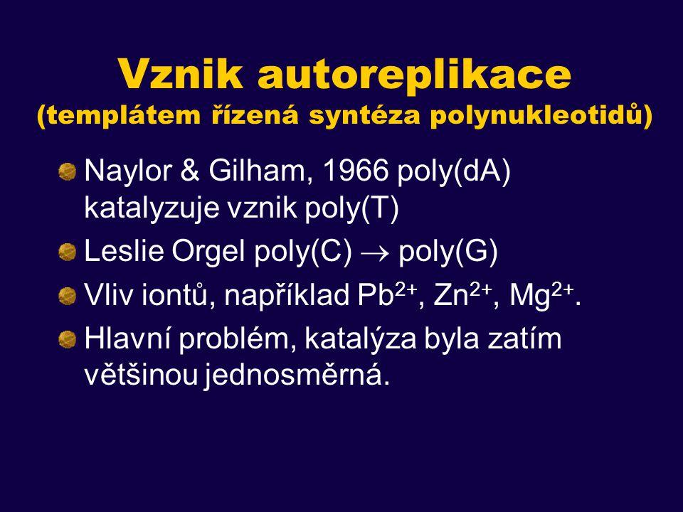 Vznik autoreplikace (templátem řízená syntéza polynukleotidů) Naylor & Gilham, 1966 poly(dA) katalyzuje vznik poly(T) Leslie Orgel poly(C)  poly(G) Vliv iontů, například Pb 2+, Zn 2+, Mg 2+.