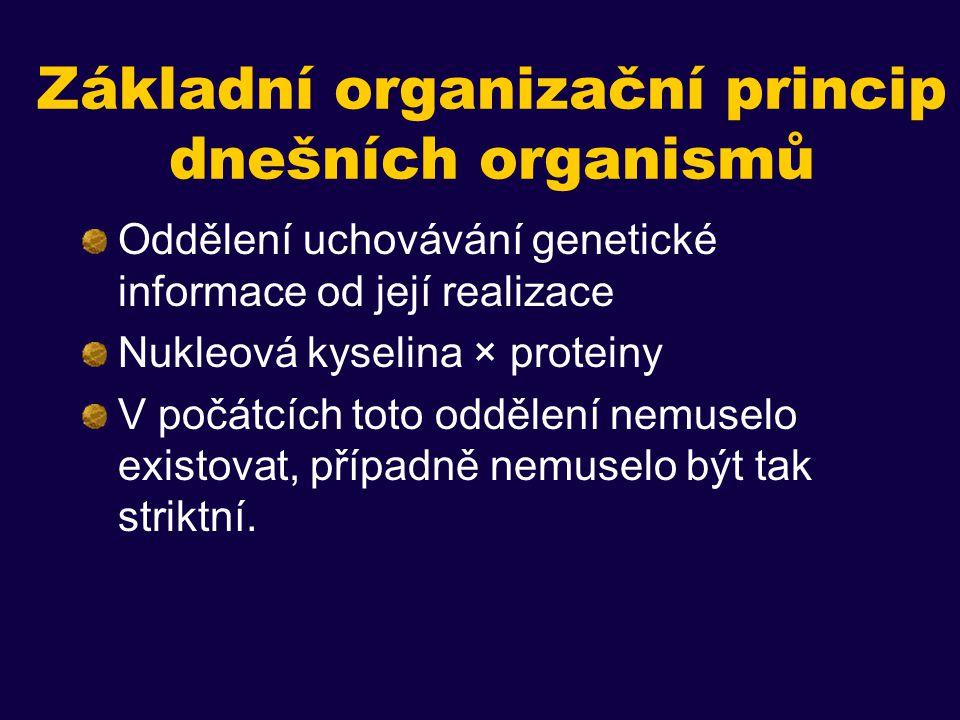 Základní organizační princip dnešních organismů Oddělení uchovávání genetické informace od její realizace Nukleová kyselina × proteiny V počátcích toto oddělení nemuselo existovat, případně nemuselo být tak striktní.