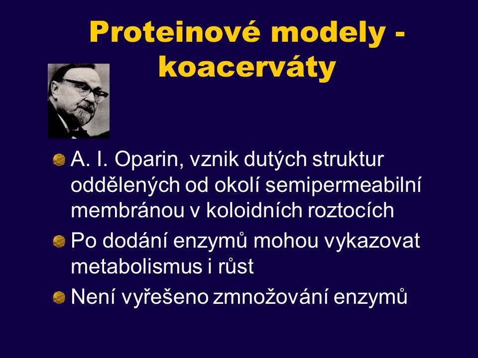 Proteinové modely - koacerváty A.I.