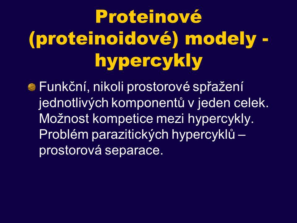 Proteinové (proteinoidové) modely - hypercykly Funkční, nikoli prostorové spřažení jednotlivých komponentů v jeden celek.