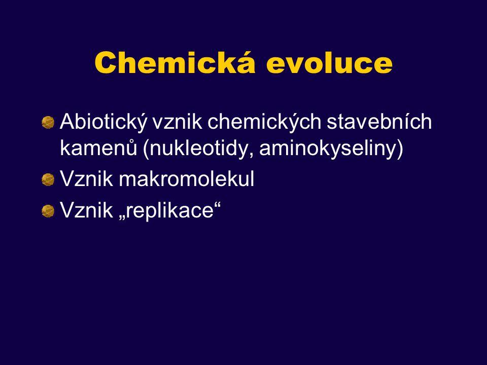 Genetický kód jako produkt postupné evoluce Korelace některých vlastností aminokyselin s vlastnostmi jim příslušných kodónů (hydrofobicita – pyrimidin ve 2.
