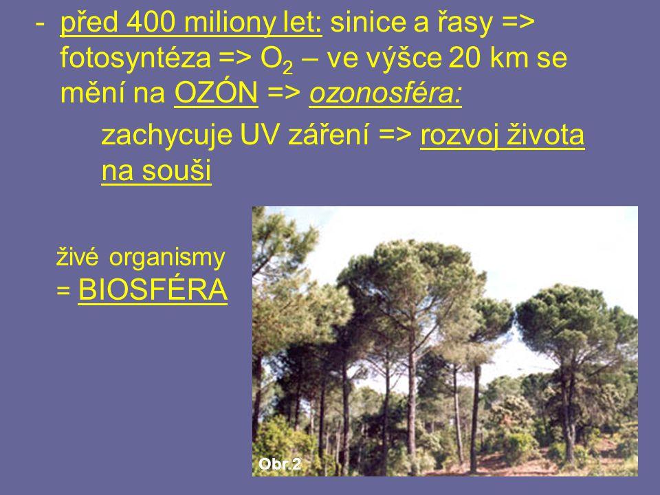 -před 400 miliony let: sinice a řasy => fotosyntéza => O 2 – ve výšce 20 km se mění na OZÓN => ozonosféra: zachycuje UV záření => rozvoj života na sou