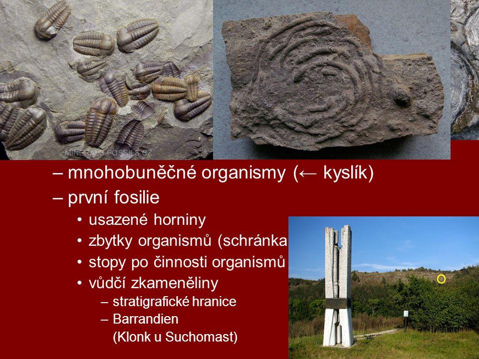 geologická období starohory (2,5 – 0,5 mld) –pohyby litosférických desek –jednob. organismy – sinice → stromatolity –mnohobuněčné organismy (← kyslík)