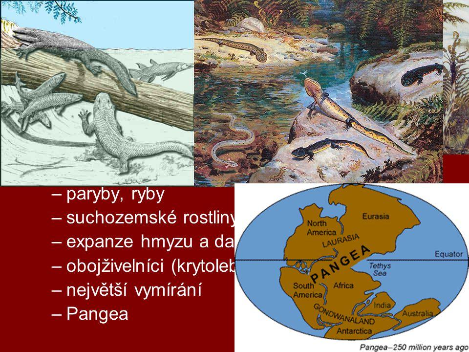 geologická období druhohory (0,25 mld – 65 mil) –trias, jura, křída –rozpad Pangey, vrásnění (alpínské) –nahosemenné r., počátky krytosemenných r.
