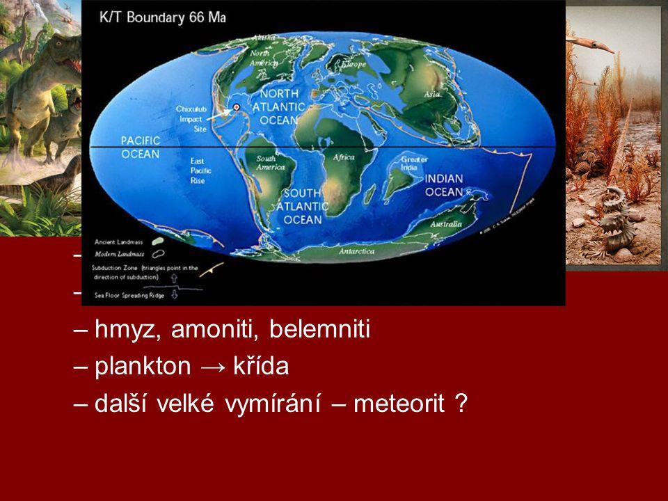 geologická období druhohory (0,25 mld – 65 mil) –trias, jura, křída –rozpad Pangey, vrásnění (alpínské) –nahosemenné r., počátky krytosemenných r. –pl