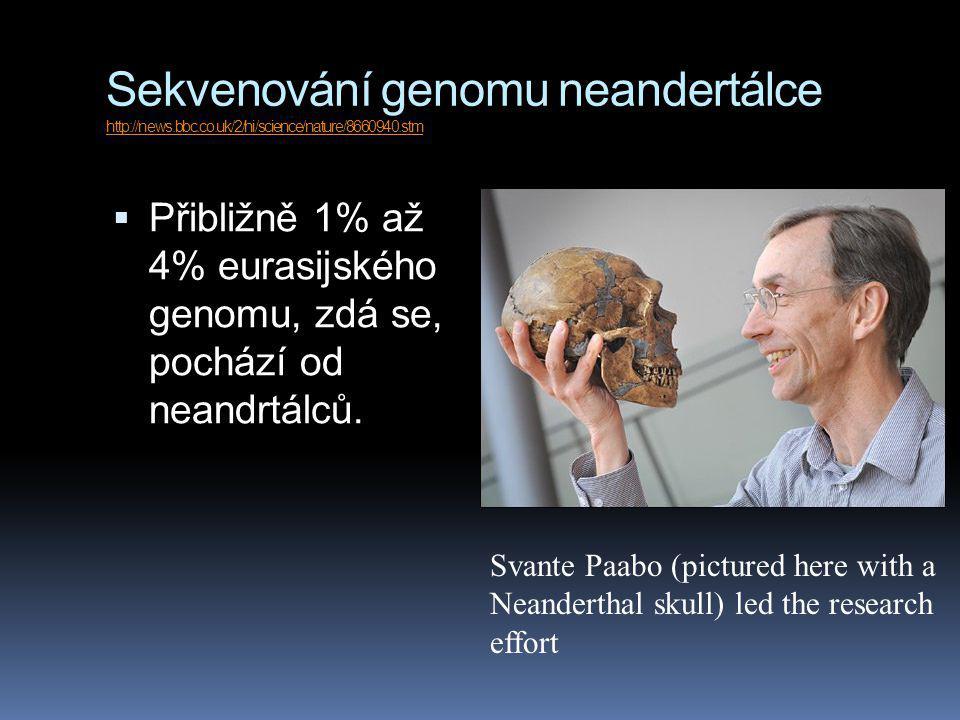 Sekvenování genomu neandertálce http://news.bbc.co.uk/2/hi/science/nature/8660940.stm http://news.bbc.co.uk/2/hi/science/nature/8660940.stm  Přibližn
