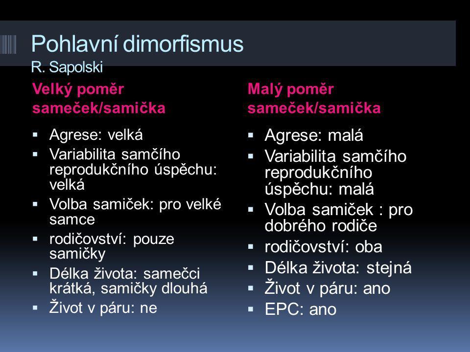 Pohlavní dimorfismus R. Sapolski Velký poměr sameček/samička Malý poměr sameček/samička  Agrese: velká  Variabilita samčího reprodukčního úspěchu: v