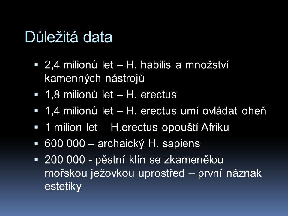 Důležitá data  2,4 milionů let – H. habilis a množství kamenných nástrojů  1,8 milionů let – H. erectus  1,4 milionů let – H. erectus umí ovládat o