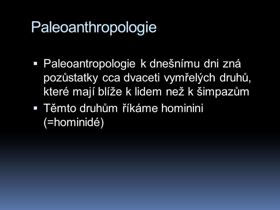 Paleoanthropologie  Paleoantropologie k dnešnímu dni zná pozůstatky cca dvaceti vymřelých druhů, které mají blíže k lidem než k šimpazům  Těmto druh