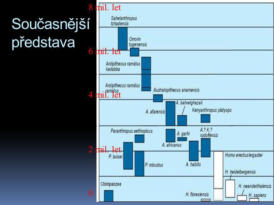 Současnější představa 8 mil. let 6 mil. let 4 mil. let 2 mil. let 0