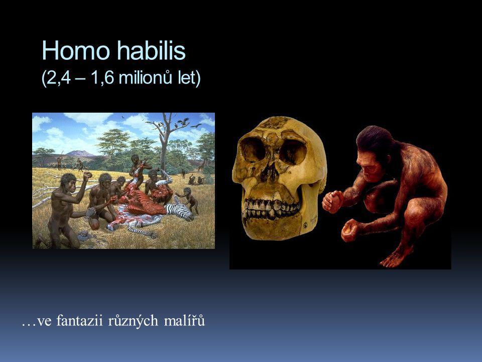 Homo habilis (2,4 – 1,6 milionů let) …ve fantazii různých malířů