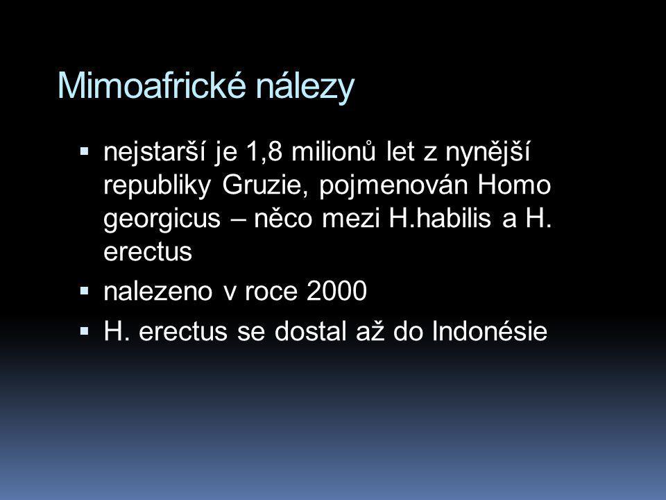 Mimoafrické nálezy  nejstarší je 1,8 milionů let z nynější republiky Gruzie, pojmenován Homo georgicus – něco mezi H.habilis a H. erectus  nalezeno