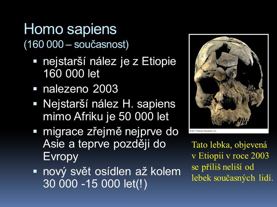 Homo sapiens (160 000 – současnost)  nejstarší nález je z Etiopie 160 000 let  nalezeno 2003  Nejstarší nález H. sapiens mimo Afriku je 50 000 let