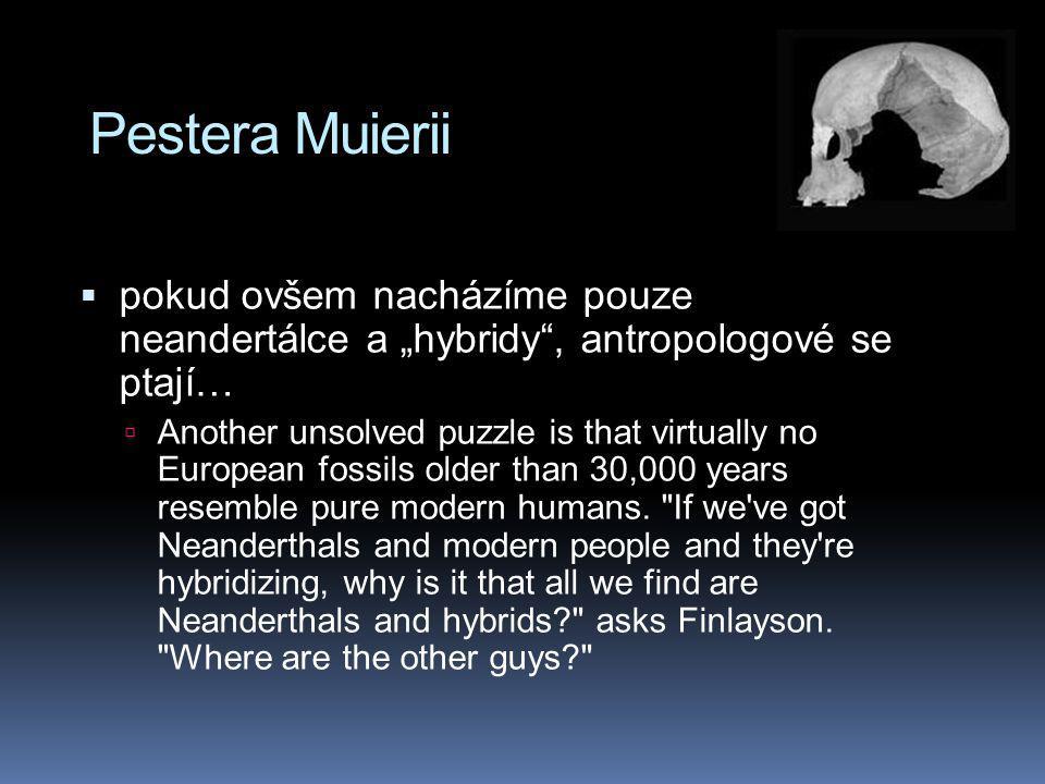 """Pestera Muierii  pokud ovšem nacházíme pouze neandertálce a """"hybridy"""", antropologové se ptají…  Another unsolved puzzle is that virtually no Europea"""