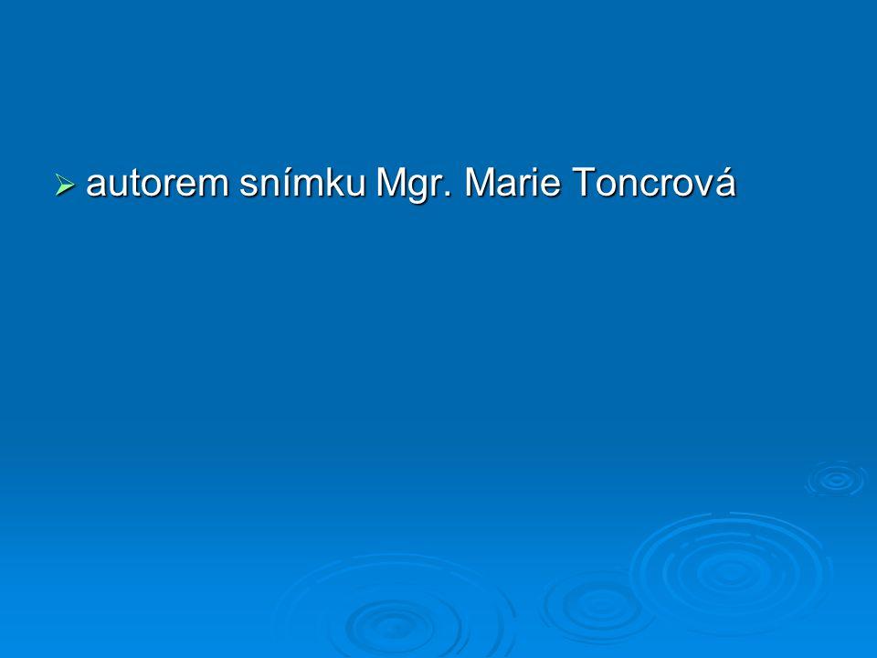  autorem snímku Mgr. Marie Toncrová