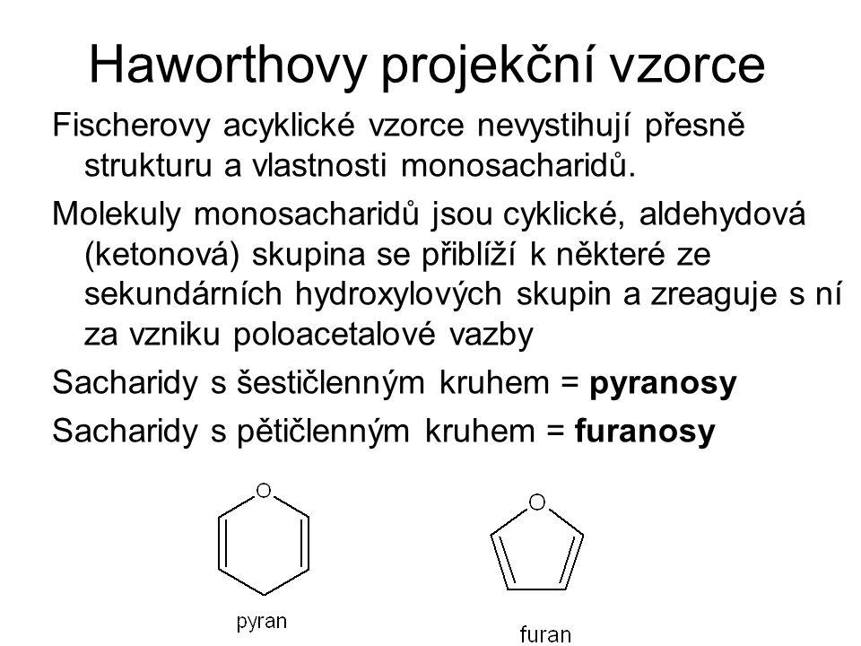 Haworthovy projekční vzorce Fischerovy acyklické vzorce nevystihují přesně strukturu a vlastnosti monosacharidů. Molekuly monosacharidů jsou cyklické,