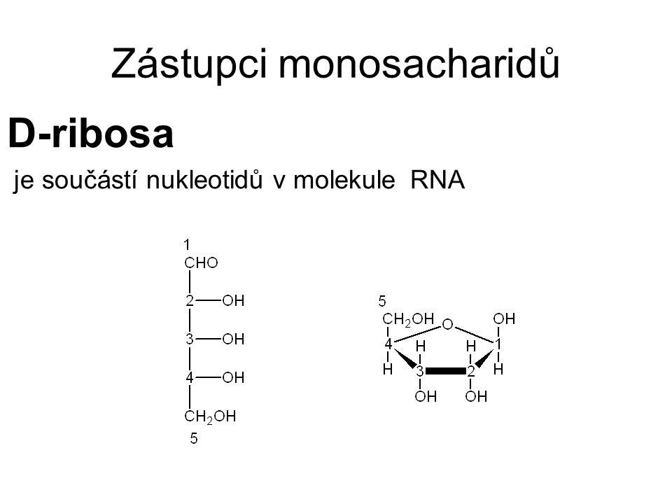 Zástupci monosacharidů D-ribosa je součástí nukleotidů v molekule RNA