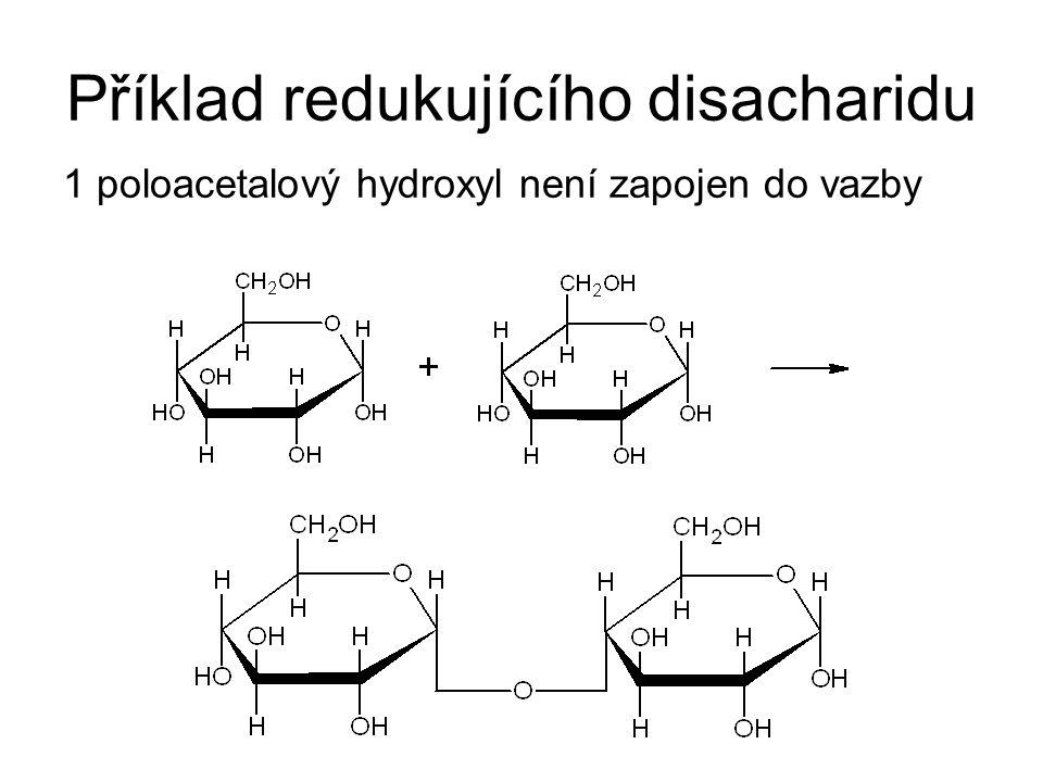 Příklad redukujícího disacharidu 1 poloacetalový hydroxyl není zapojen do vazby