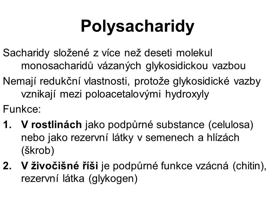 Polysacharidy Sacharidy složené z více než deseti molekul monosacharidů vázaných glykosidickou vazbou Nemají redukční vlastnosti, protože glykosidické vazby vznikají mezi poloacetalovými hydroxyly Funkce: 1.V rostlinách jako podpůrné substance (celulosa) nebo jako rezervní látky v semenech a hlízách (škrob) 2.V živočišné říši je podpůrné funkce vzácná (chitin), rezervní látka (glykogen)