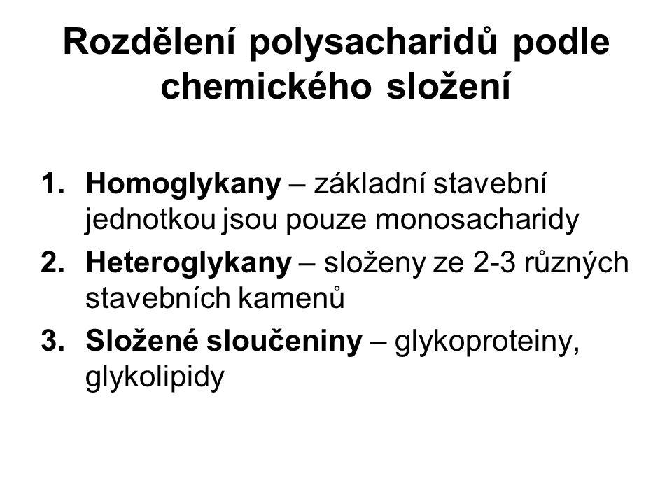 Rozdělení polysacharidů podle chemického složení 1.Homoglykany – základní stavební jednotkou jsou pouze monosacharidy 2.Heteroglykany – složeny ze 2-3 různých stavebních kamenů 3.Složené sloučeniny – glykoproteiny, glykolipidy