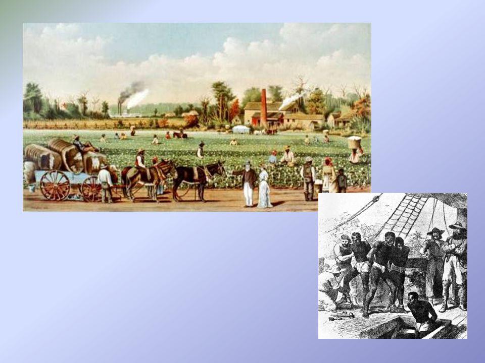 """Střední osady (New Jersey, New York, Pennsylvania, Delaware) mísí se prvky Jižních kolonií a Nové Anglie etnická směs – New York (Holanďané, Němci, Židé, """"skotští Irové) větší náboženská snášenlivost, celkově menší sociální napětí; ve městech evropské zvyky rozvoj řemeslné výroby vzniku zejména textilních a železářských manufaktur velká střediska obchodu a průmyslu (New Yorku, Philadelphia)"""