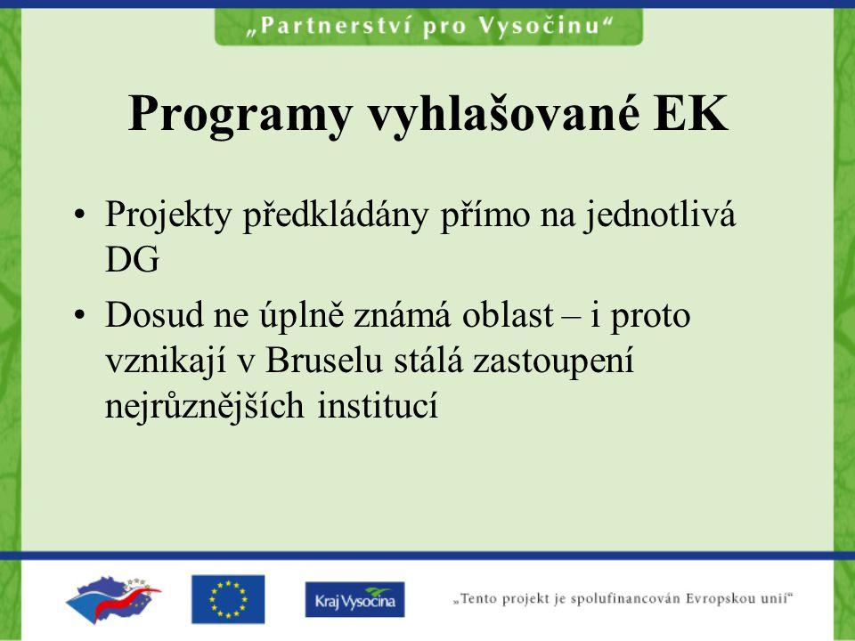 Programy vyhlašované EK Projekty předkládány přímo na jednotlivá DG Dosud ne úplně známá oblast – i proto vznikají v Bruselu stálá zastoupení nejrůznějších institucí