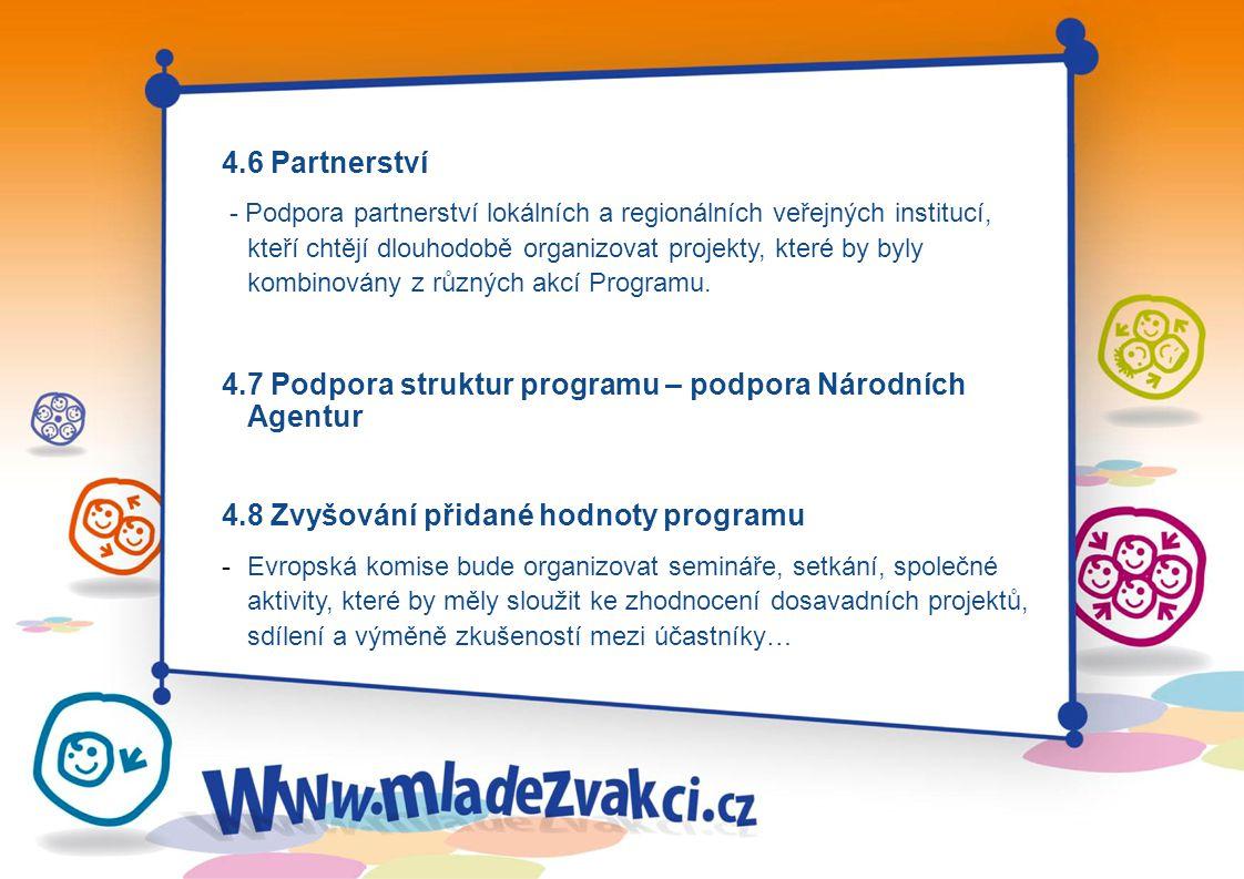 4.6 Partnerství - Podpora partnerství lokálních a regionálních veřejných institucí, kteří chtějí dlouhodobě organizovat projekty, které by byly kombinovány z různých akcí Programu.