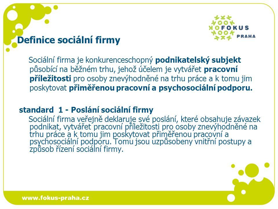 Platforma sociálních firem Cíle stát se reprezentativním partnerem pro zástupce státního a veřejného sektoru, bankovních institucí, akademické sféry a dalších institucí a široké veřejnosti, jejímž úkolem bude: prosazovat model sociální firmy v České republice, tj.