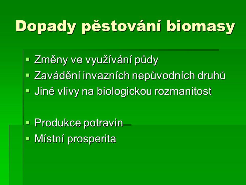 Dopady pěstování biomasy  Změny ve využívání půdy  Zavádění invazních nepůvodních druhů  Jiné vlivy na biologickou rozmanitost  Produkce potravin