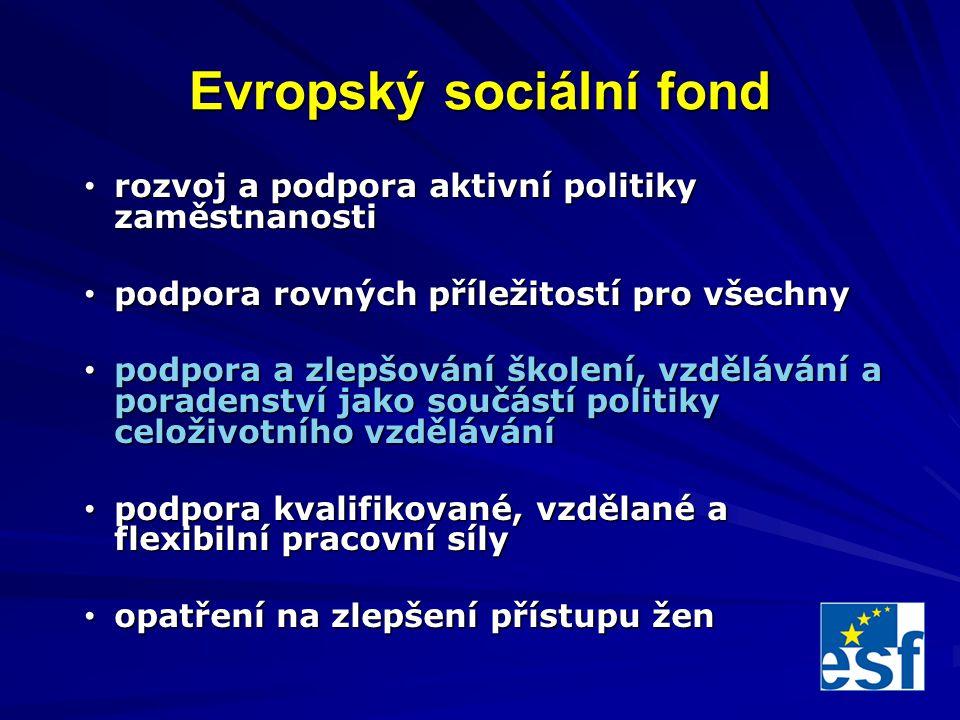 Evropský sociální fond rozvoj a podpora aktivní politiky zaměstnanosti rozvoj a podpora aktivní politiky zaměstnanosti podpora rovných příležitostí pro všechny podpora rovných příležitostí pro všechny podpora a zlepšování školení, vzdělávání a poradenství jako součástí politiky celoživotního vzdělávání podpora a zlepšování školení, vzdělávání a poradenství jako součástí politiky celoživotního vzdělávání podpora kvalifikované, vzdělané a flexibilní pracovní síly podpora kvalifikované, vzdělané a flexibilní pracovní síly opatření na zlepšení přístupu žen opatření na zlepšení přístupu žen