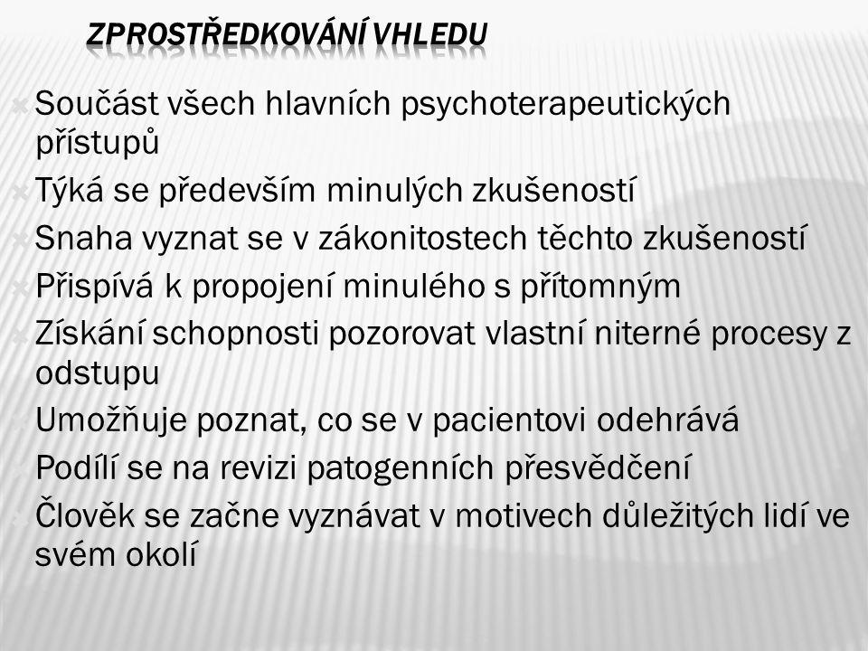  Součást všech hlavních psychoterapeutických přístupů  Týká se především minulých zkušeností  Snaha vyznat se v zákonitostech těchto zkušeností  P