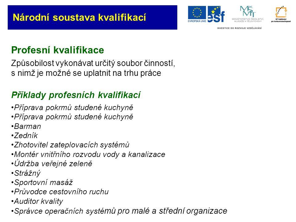 Národní soustava kvalifikací www.narodni-kvalifikace.cz ( jednotlivé dílčí kvalifikace, jejich standardy, seznamy autorizovaných osob pro každou dílčí kvalifikaci) www.vzdelaniaprace.cz Děkuji Vám za pozornost Národní soustava kvalifikací