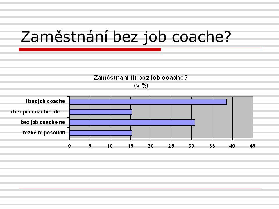 Zaměstnání bez job coache