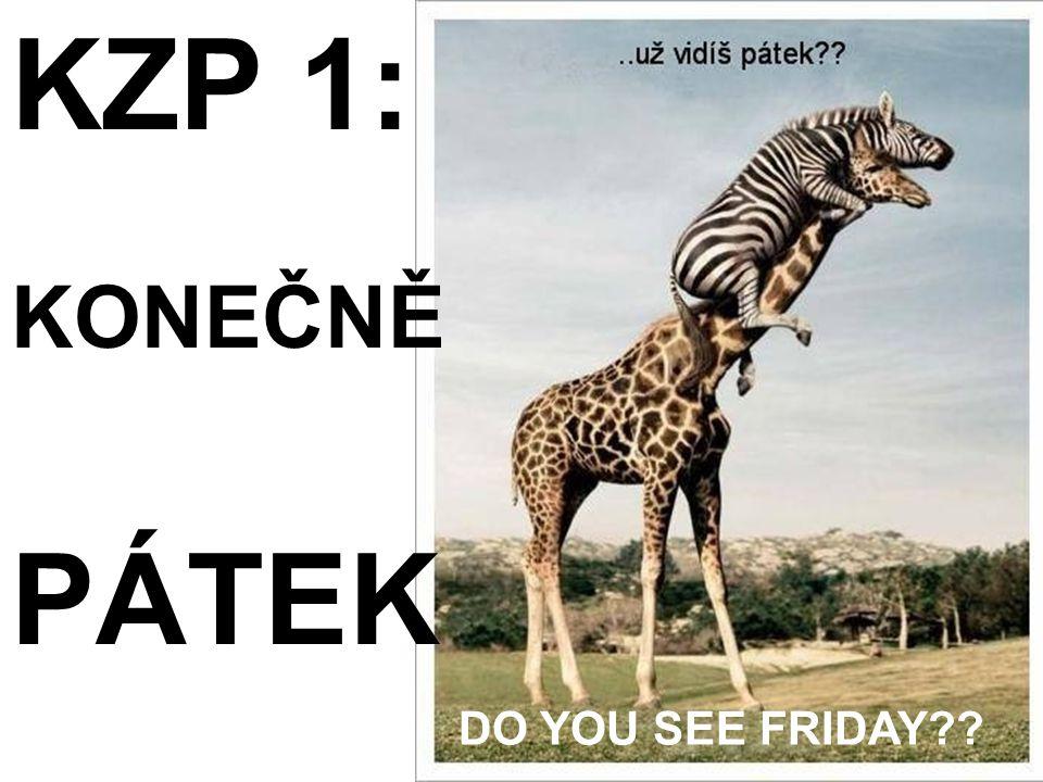 DO YOU SEE FRIDAY?? KZP 1: KONEČNĚ PÁTEK