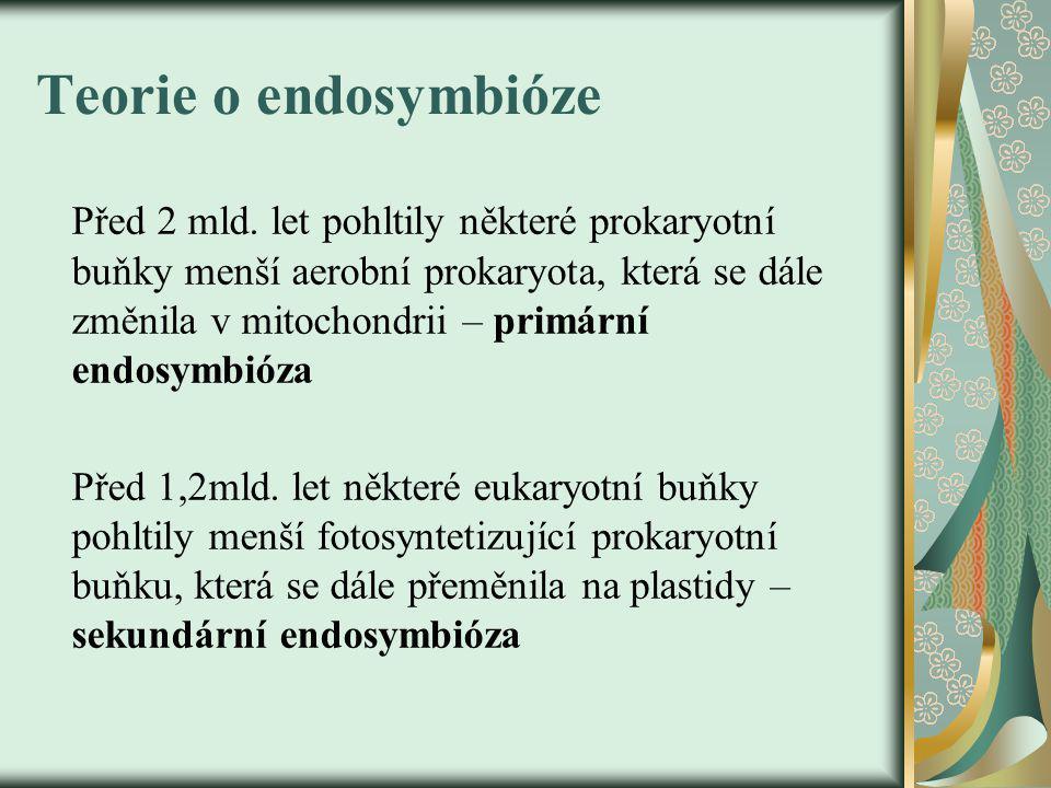 Teorie o endosymbióze Před 2 mld.